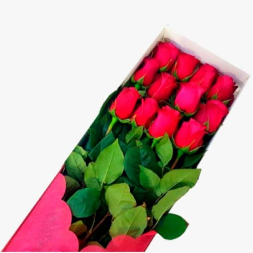 Caja boutique premium 12 rosas rojas